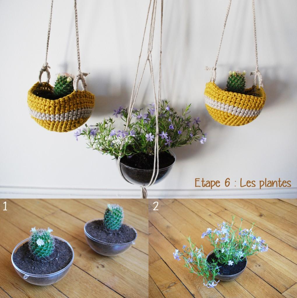 DIY_etape6-plantes