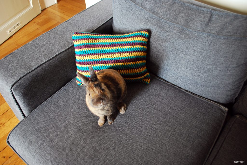 coussin-crochet-carofoliz13