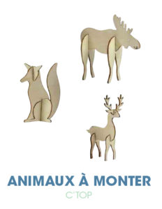 Animaux à monter C'TOP