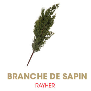 Branches RAYHER