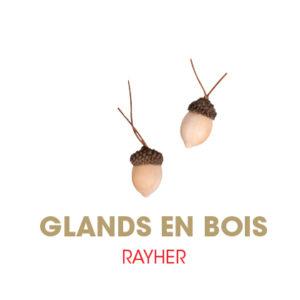 Gland RAYHER
