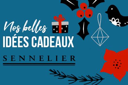 Idees Cadeaux Coffrets Sennelier Le Blog Rougier Ple
